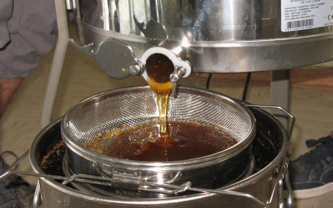 Prvo točenje medu