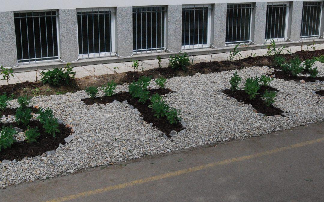 Prenovljena okolica šole